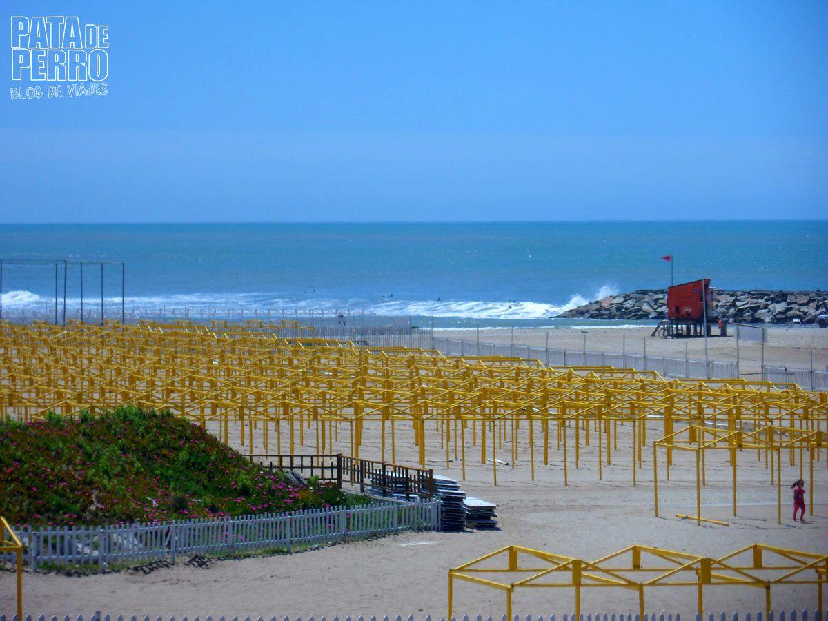 costa-norte-mar-del-plata-argentina-pata-de-perro-blog-de-viajes16