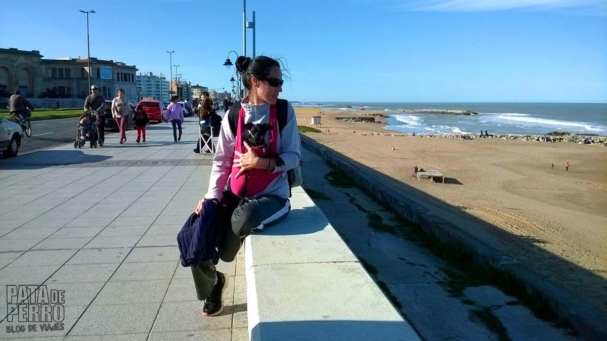 costa-norte-mar-del-plata-argentina-pata-de-perro-blog-de-viajes22