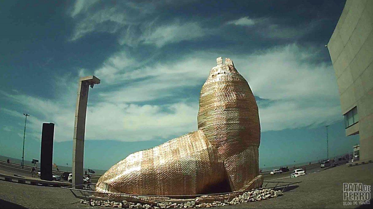 costa-norte-mar-del-plata-argentina-pata-de-perro-blog-de-viajes23