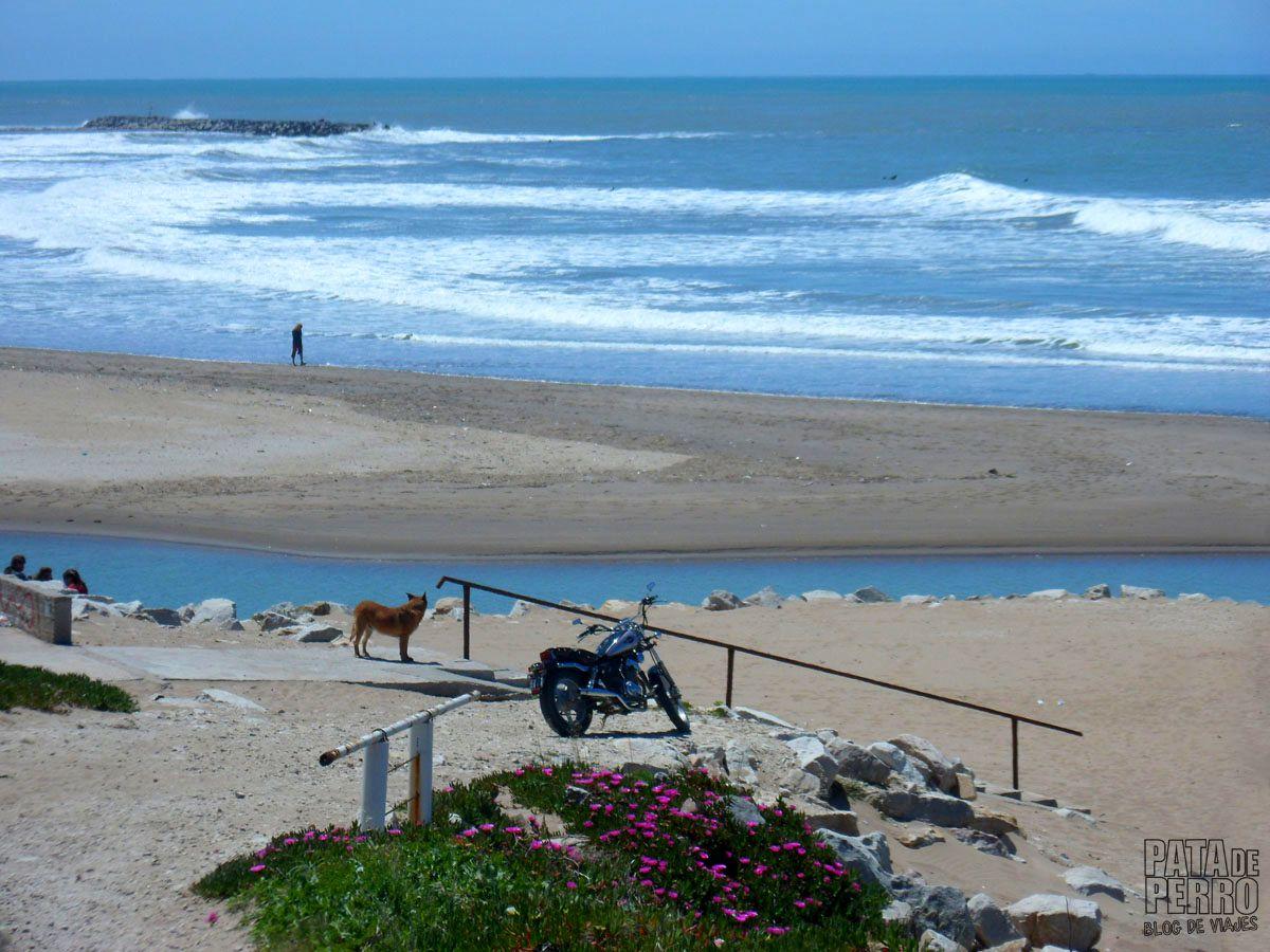 costa-norte-mar-del-plata-argentina-pata-de-perro-blog-de-viajes28