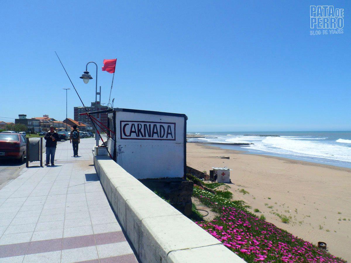 costa-norte-mar-del-plata-argentina-pata-de-perro-blog-de-viajes30