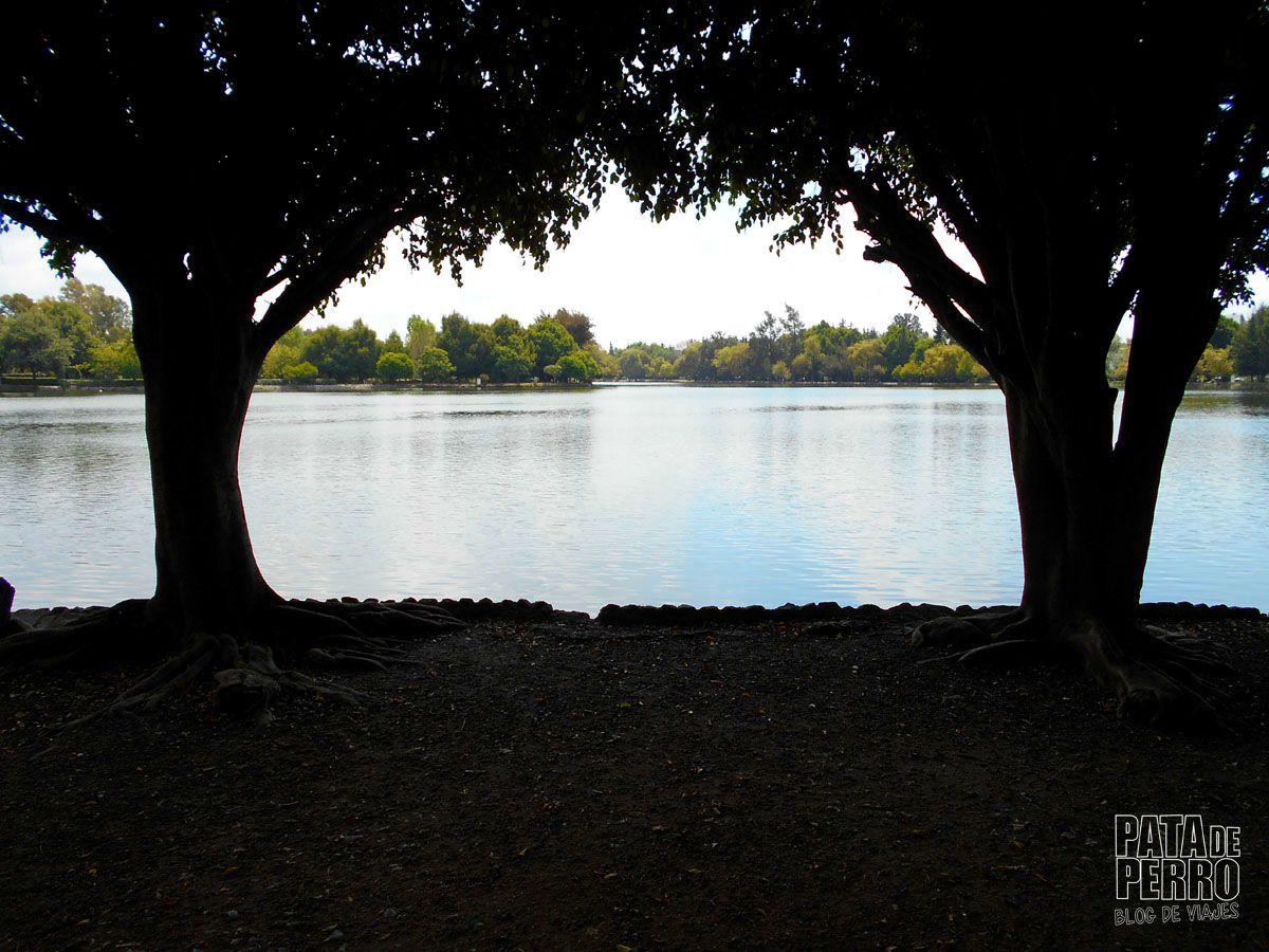 laguna-de-san-baltazar-puebla-mexico-pata-de-perro-blog-de-viajes01
