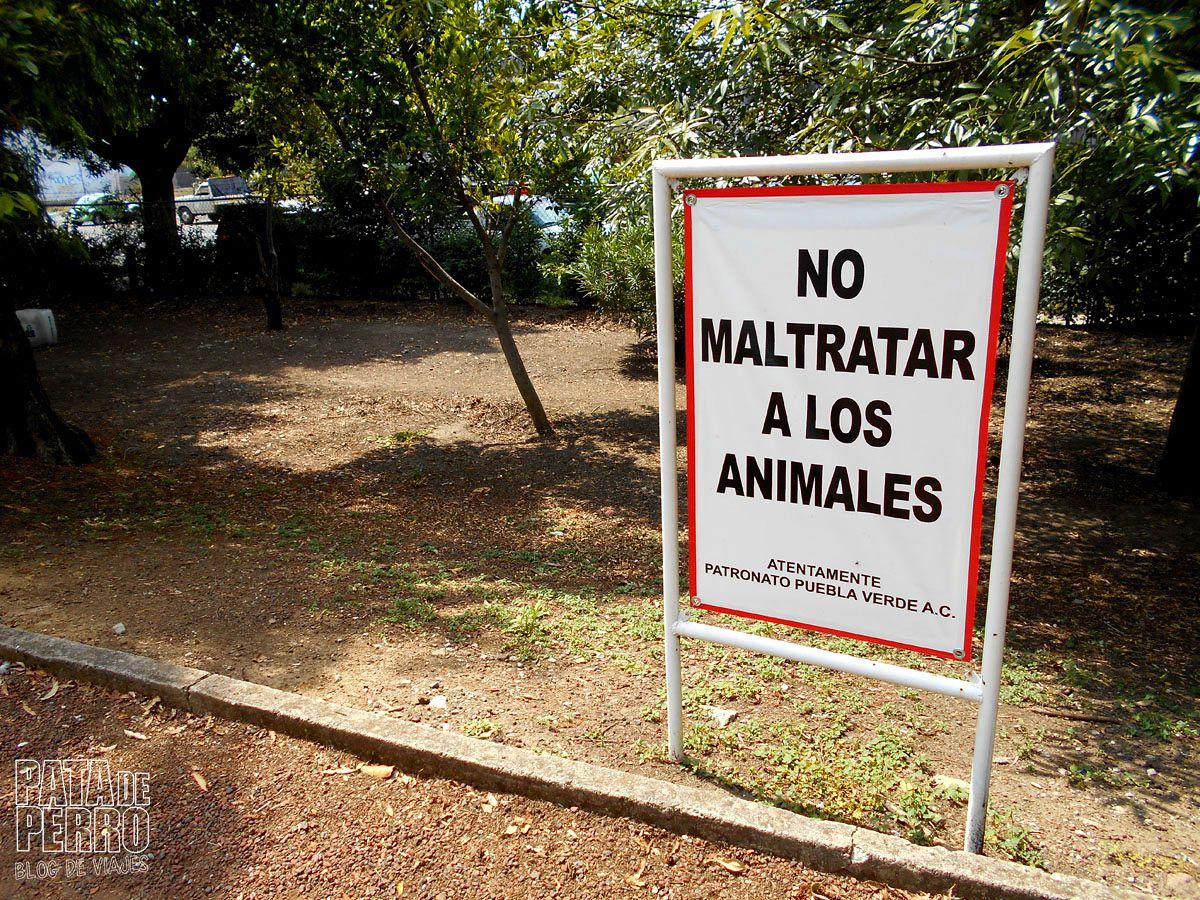 laguna-de-san-baltazar-puebla-mexico-pata-de-perro-blog-de-viajes17