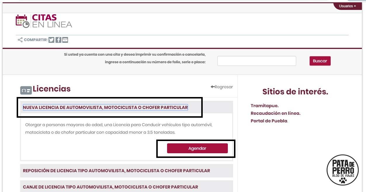 Licencia De Conducir En Puebla Pata De Perro