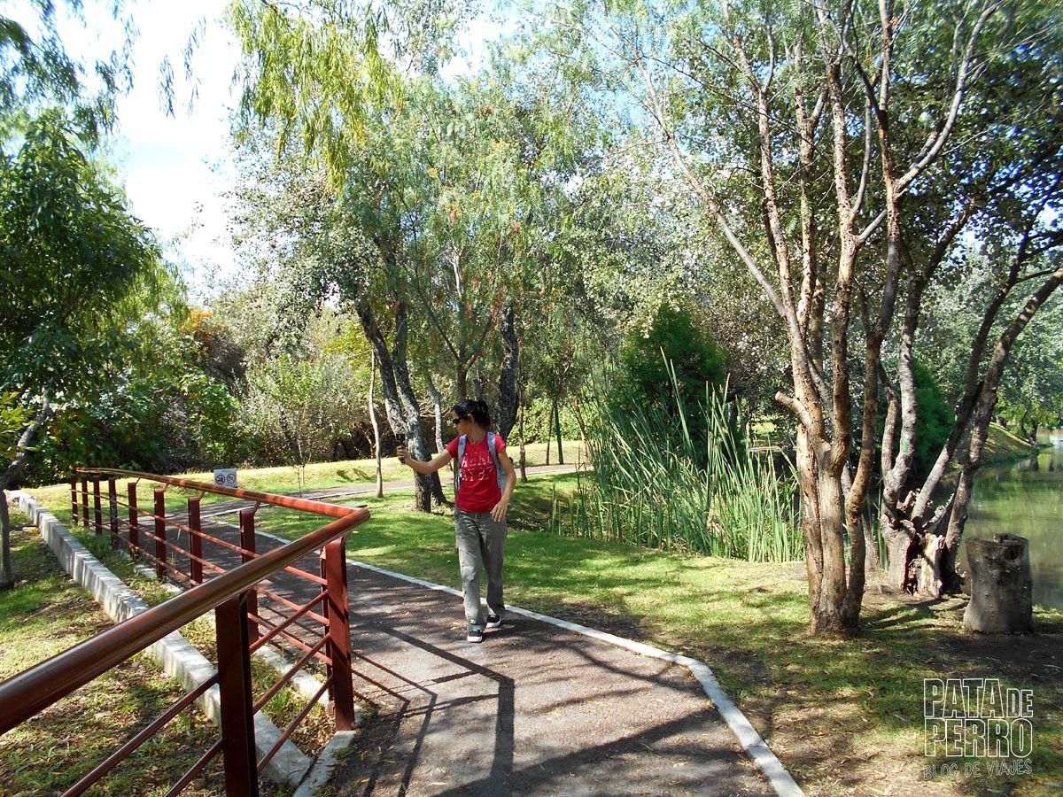 laguna-de-chapulco-puebla-mexico-pata-de-perro-blog-de-viajes16