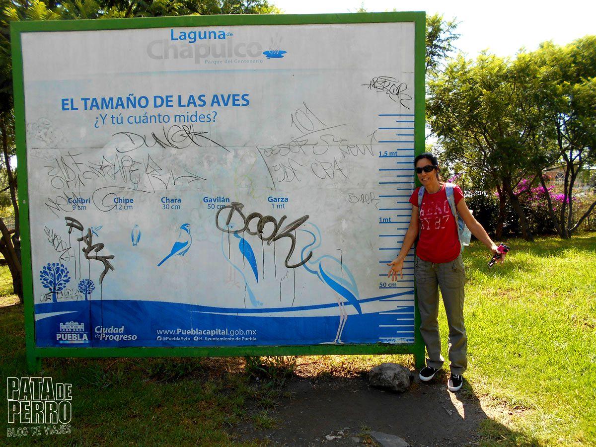 laguna-de-chapulco-puebla-mexico-pata-de-perro-blog-de-viajes18