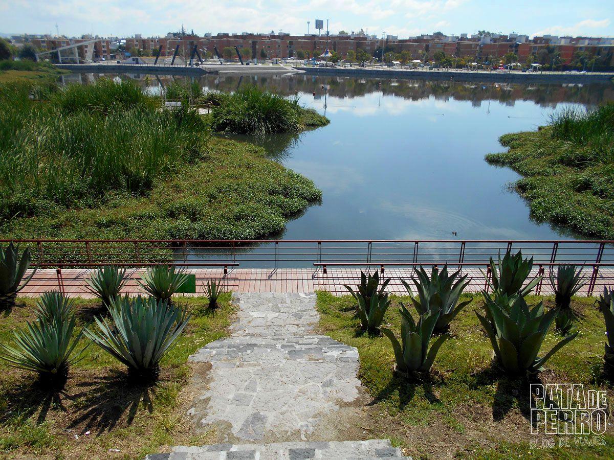laguna-de-chapulco-puebla-mexico-pata-de-perro-blog-de-viajes28