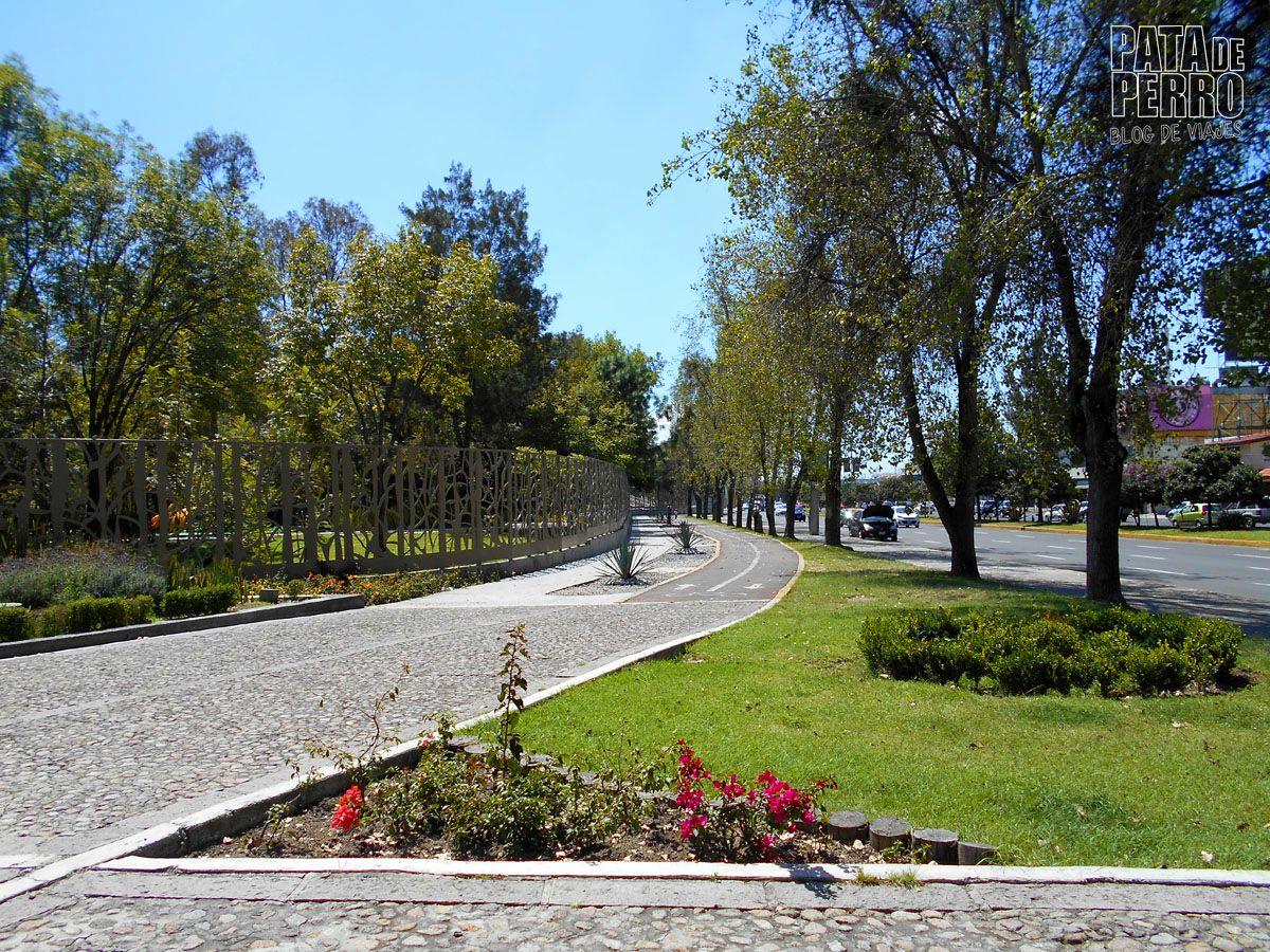 parque-ecologico-puebla-mexico-pata-de-perro-blog-de-viajes01