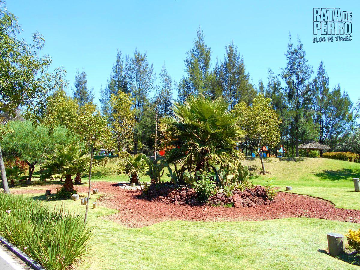parque-ecologico-puebla-mexico-pata-de-perro-blog-de-viajes04