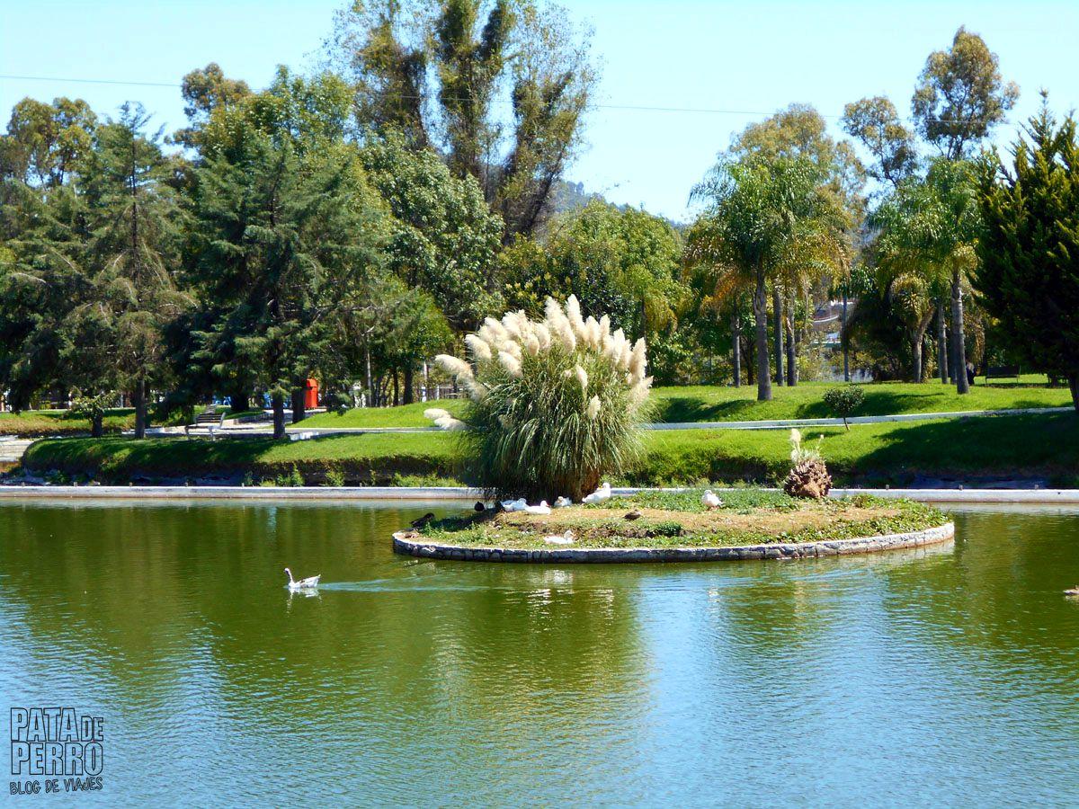 parque-ecologico-puebla-mexico-pata-de-perro-blog-de-viajes15