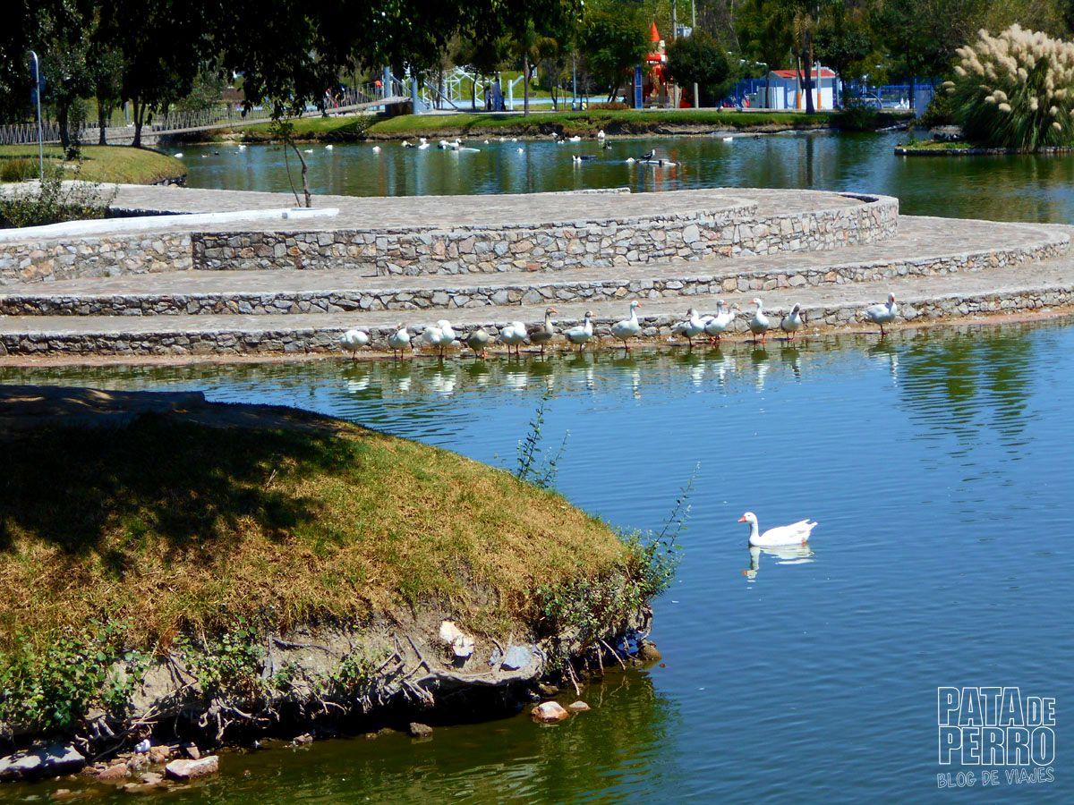 parque-ecologico-puebla-mexico-pata-de-perro-blog-de-viajes16