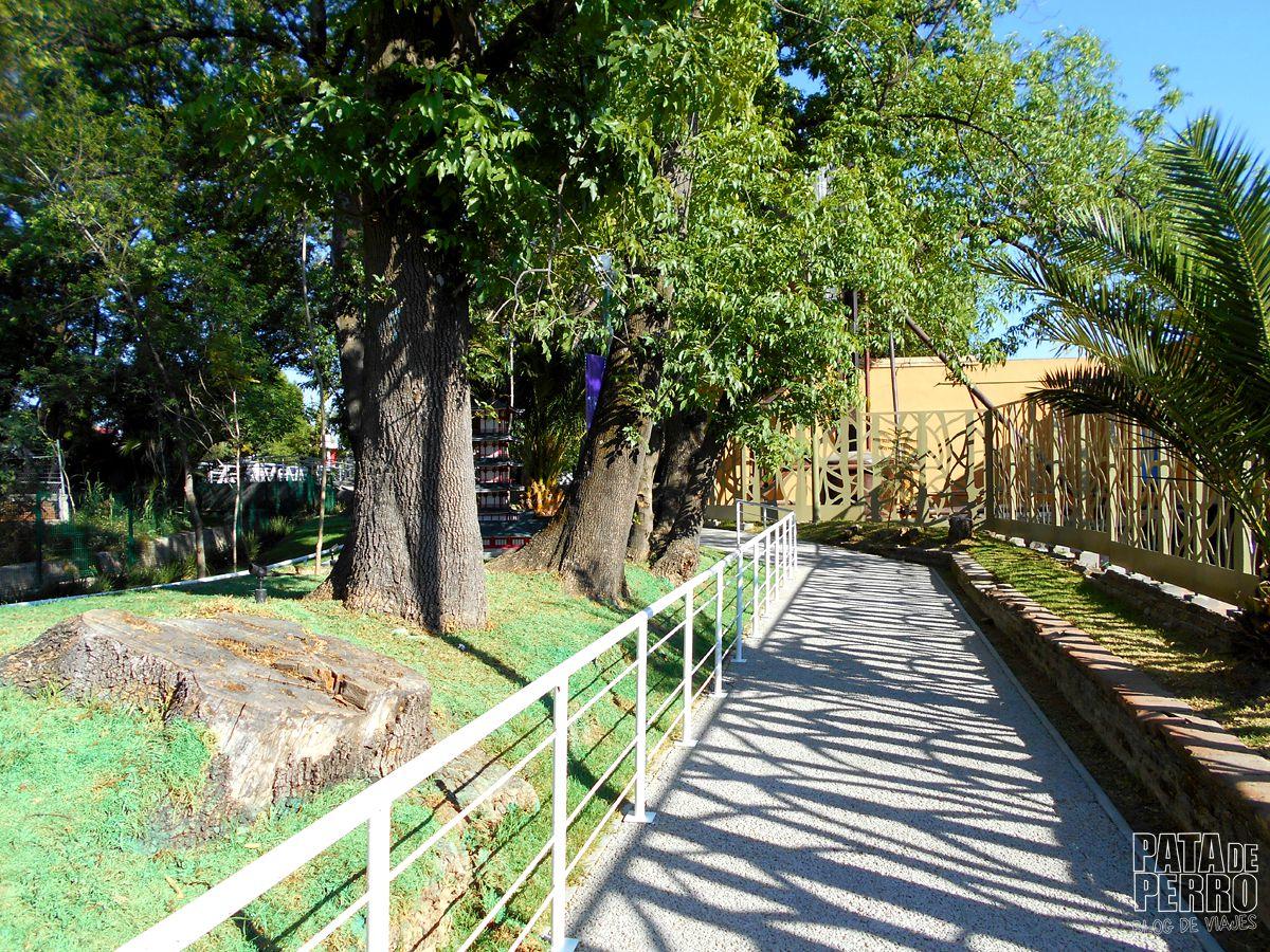 parque-paseo-de-los-gigantes-puebla-mexico-pata-de-perro-blog-de-viajes11