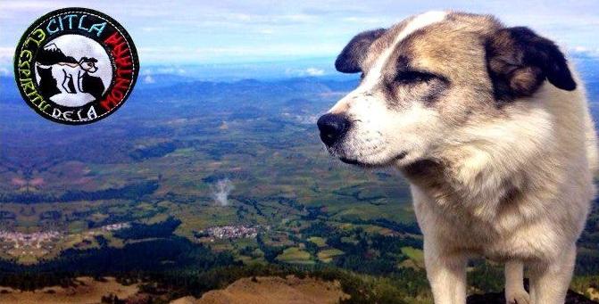Citla, el espíritu de la montaña
