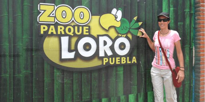 Zoo Parque Loro Puebla (Parte 1)